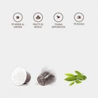 KIT degustazione té in foglia in capsule compatibili nespresso