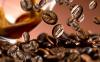 Dove acquistare i migliori caffè in grani